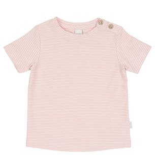 Baby Shirt Linescape Short Sleeve