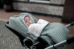 Car seat cover 0+ 3 points Antwerp